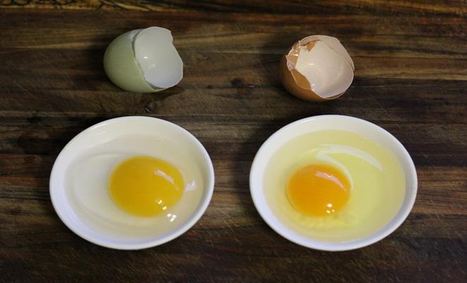 Яичные желтки и белки