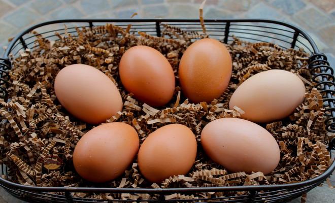 Семь коричневых куриных яиц
